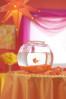 12-03-01-L_orange3-012_2