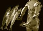 u-7807-3-Fish_1066-Blake_2