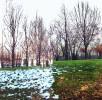 half-snowy-hill_5412