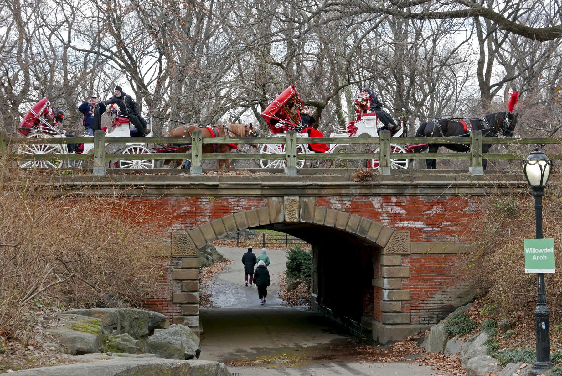 Horse-drawn carriages, Central Park, NYC. Jon Chase photo