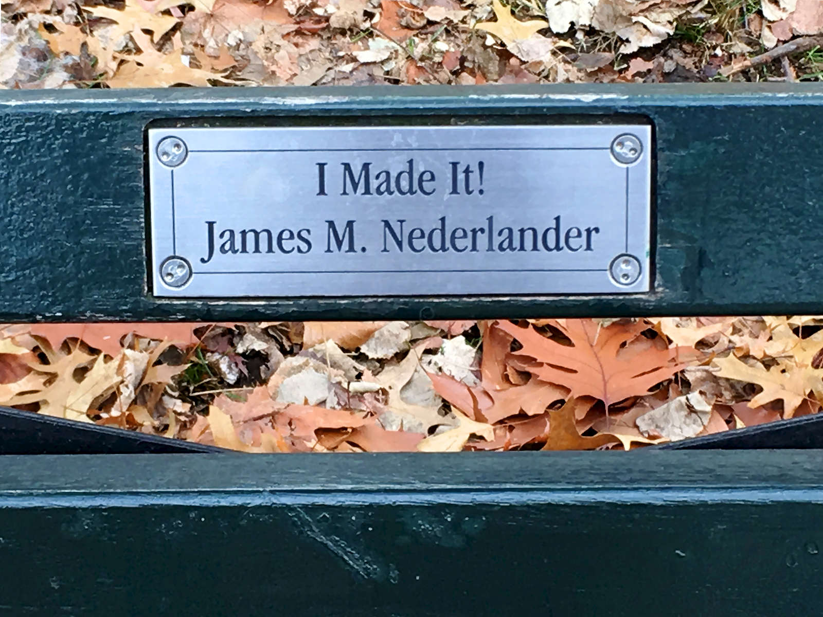 Memorial plaque on Central Park bench. Jon Chase photo