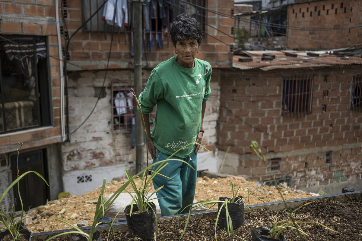 A gardener plants in a garden bed in Moravia, a former garbage dump. Hired by the city's Jardim Botanico, the workers contract expires in two days, and the fate of the gardeners and garden is unknown.