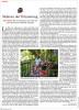 For der Spiegel in Rio de JaneiroPublished: July 2015