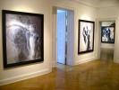 AM-Rodin-InstallShots-01-Web