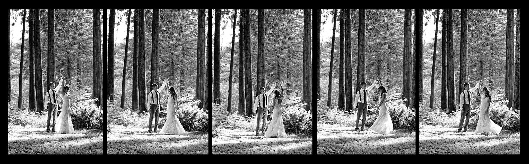 RedwoodTwirl