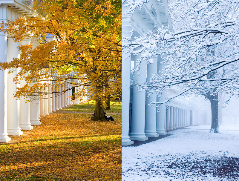 uva-2_Seasons_Lawn_DA