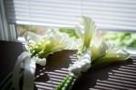 wed-Wormington-Wedding-DA01