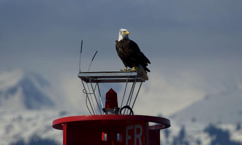 Eagle, Alaska