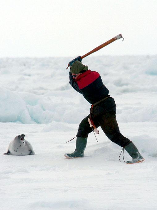 This hunter attacked me after he killed the seal