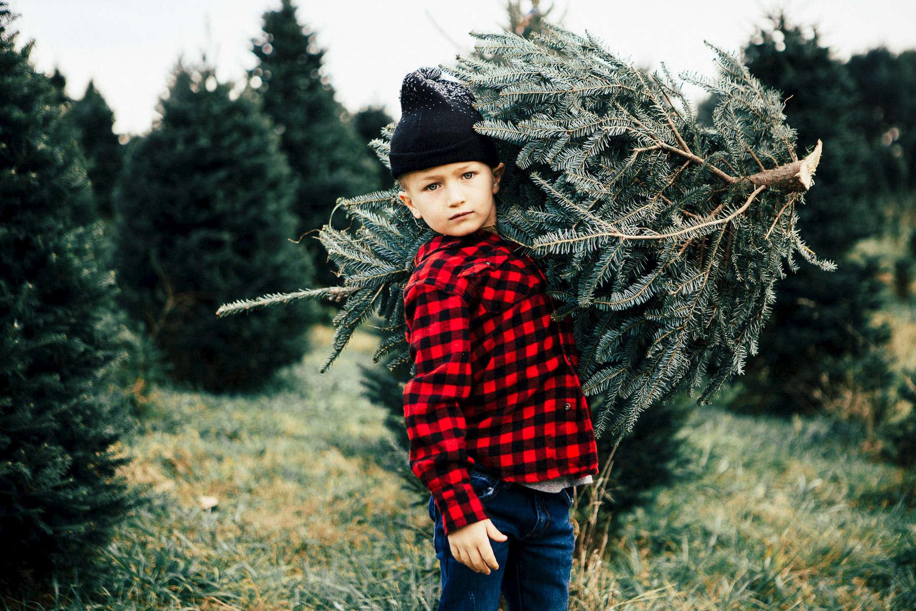 112815-christmas-tree-130
