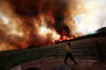 Wildfires_Co-1