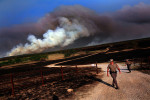 Wildfires_Co-4