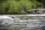 A little recreational surfing on the Middle Fork of the Salmon River, spring 2018.
