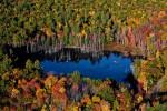 Worcester Mill Pond