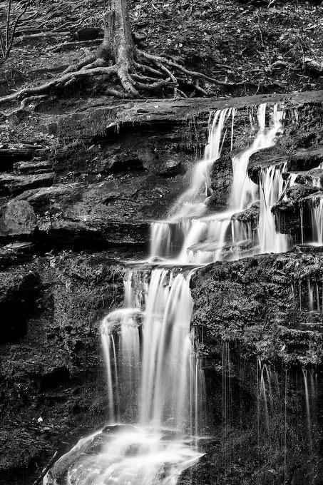 Gunn Falls