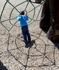 3/20/16-- NATICK-- {quote}caught in the web{quote}  Nazarii Vitouskyi, 3, was playing with his parents Roman and Alla at John J. Lane Park in natick Wednesday.Daily News and Wicked Local Staff Photo/Art Illman