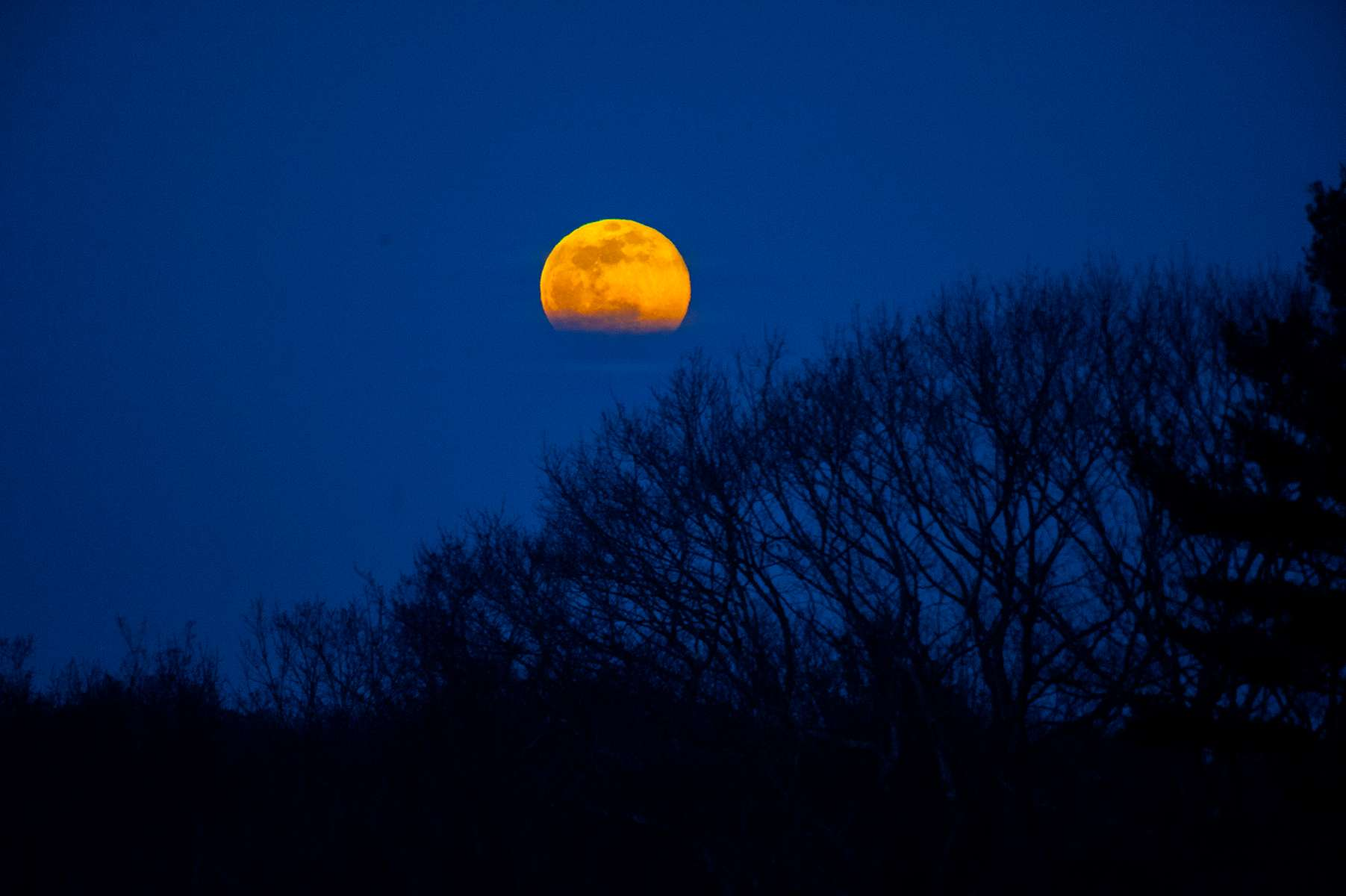 3/09/20-- FRAMINGHAM--  View of the full moon Monday evening  known as the {quote}worm moon{quote} from the Coco Ridge Trail at Callahan State Park. A super moon occurs when the moon's orbit is closest (perigee) to earth at the same time it is full, according to NASA.  It is called a worm moon because it happens when the ground is soft enough to allow earthworms to appear, marking the beginning of Spring.  [Daily News and Wicked Local Staff Photo/Art Illman]
