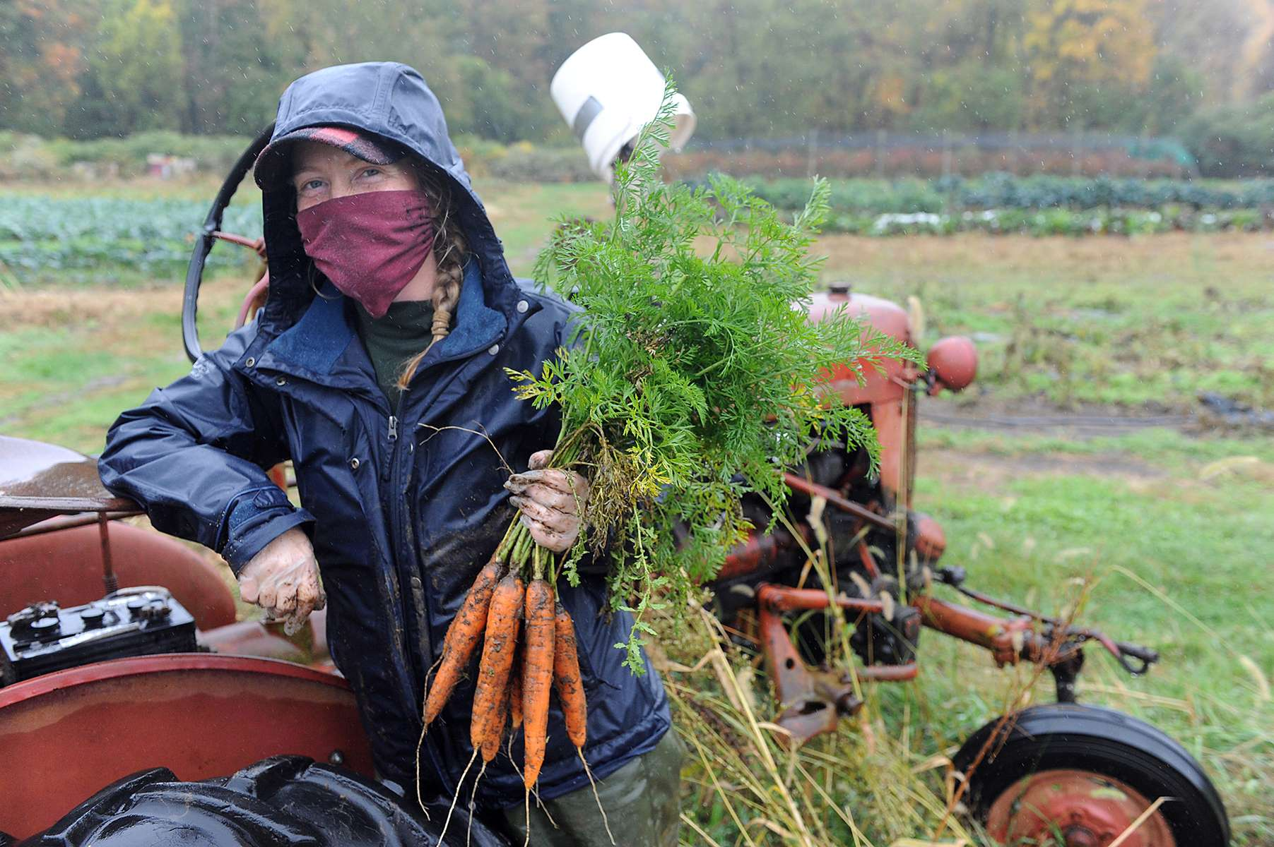 10/13/20 - FRAMINGHAM - Stearns Farm Manager Ember Fleming with just pulled carrots Tuesday morning. [Daily News and Wicked Local Staff Photo/Art Illman]