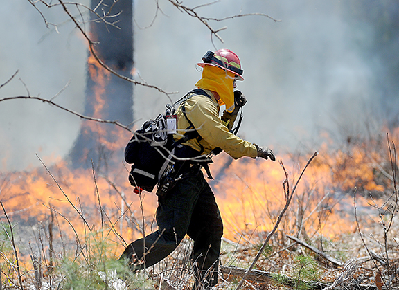 5/7/14-- MARLBOROUGH-- for kendall storyTom Muise, District 14 Fire Warden, Bureau of Forest Fire Control in Hopkinton, makes his way through a  controlled burn at the Desert Natural Area on the Sudbury-Marlborough line Wednesday.Daily News Staff Photo/Art Illman