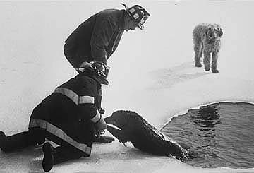 {quote}I used to tell people the dog on the right called 911... this photo from the 1980s at the News-Tribune in Waltham. It remains a privilege and a thrill to document MetroWest  communities.{quote}All photographs © Art Illman 2011