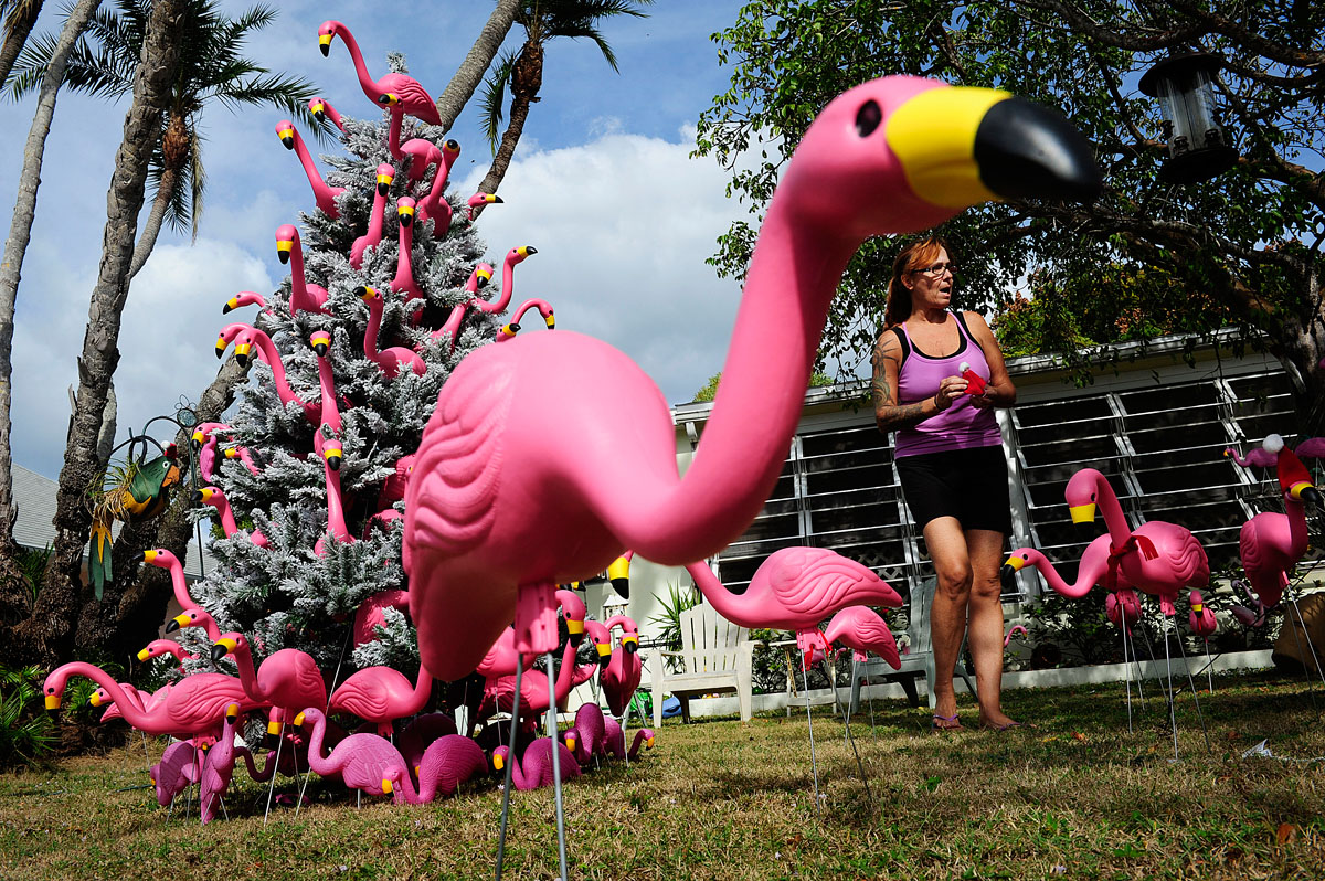 Donna Smith places hats and scarves on her plastic flamingoes as she celebrates Christmas Dec. 2, 2013 at her Fort Myers Beach home. She has been celebrating with a lawn theme the past 7 years she's owned the home. Last year is was