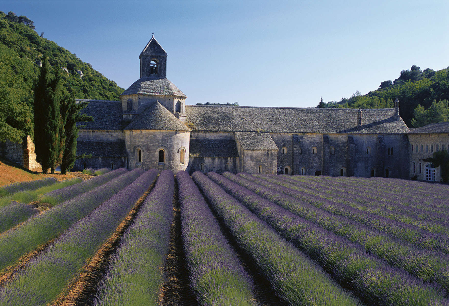 Notre-Dame de Senanque Abbey  Gordes, France