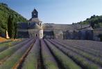 Notre-Dame de Senanque Abbey  Gordes, France