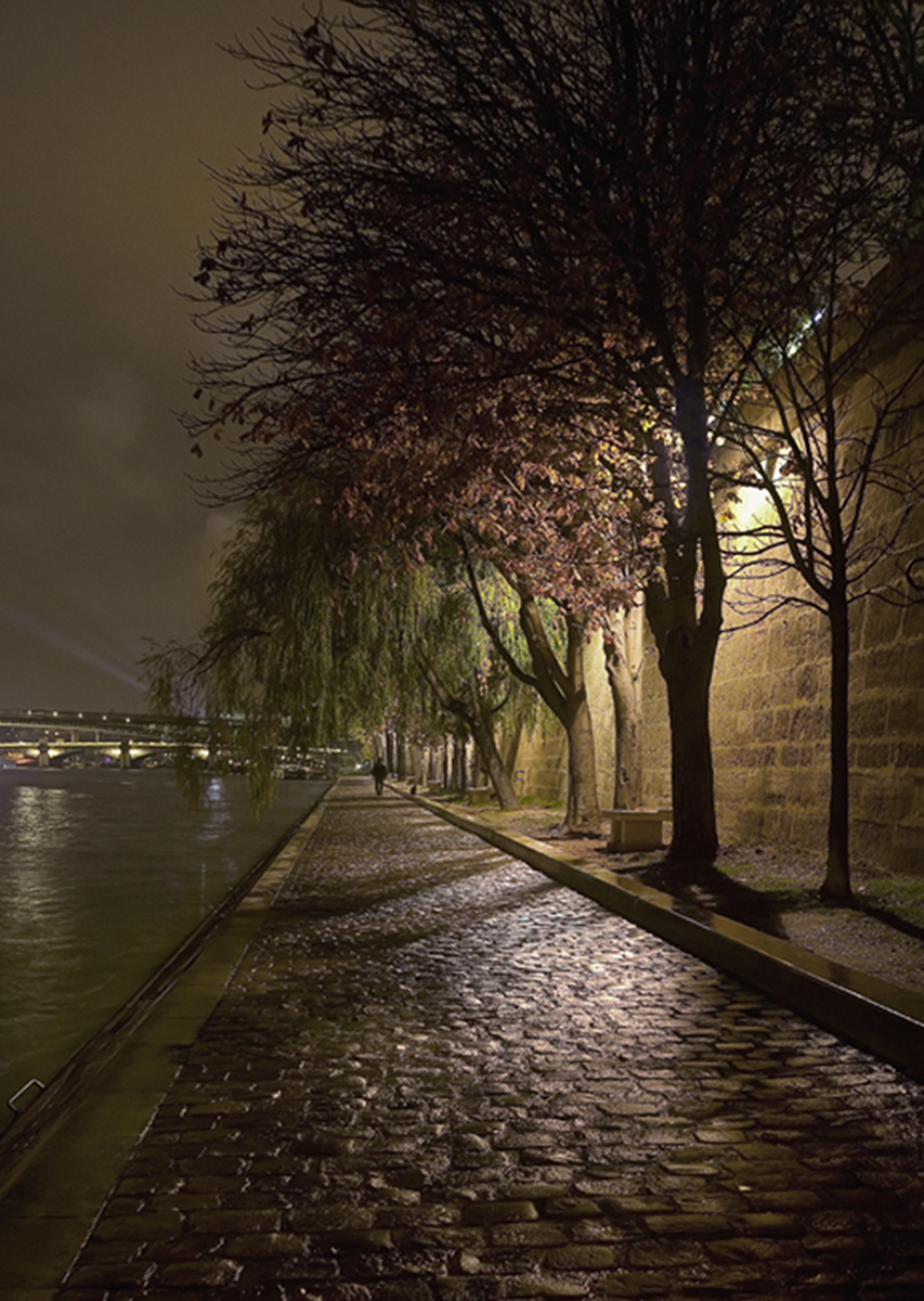The Seine at Midnight