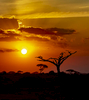 Amboseli-Sunset-for-IG-9W2A7120