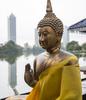 Buddha-w-Torn-Cloth-No-3-portrait-10Z0C0715-copy-copy