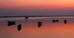 Jaffna-Sunset-No-3-In--20130323_2386-copy-copy