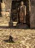 Standing-Buddha-_-Polonnaurwa-0Z0C6445