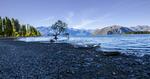 WS-FINAL-Wanaka-Lone-Tree-no-11-0Z0C9364-copy