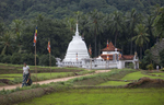 WS-Jungle-Temple-Kurrenegela--copy-copy