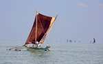 WS-Negombo-Boat-Under-Sail-BEST-IMG_9763