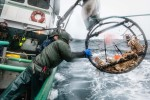 z-commercial-fishing-20