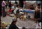 machu_market