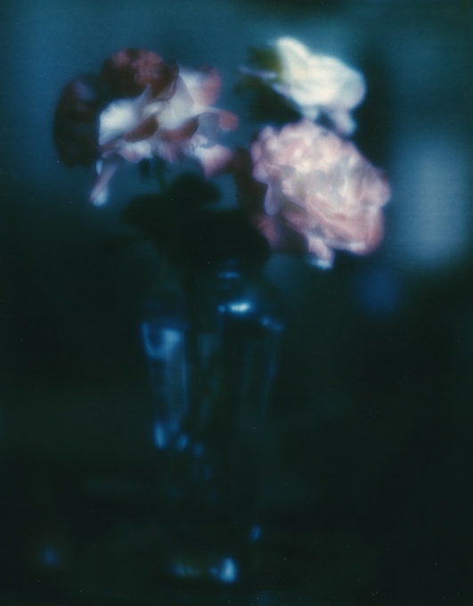 polaroid_flower8x10