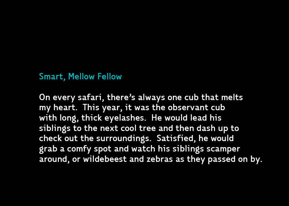 3-SmartMellow-Jul13-2015