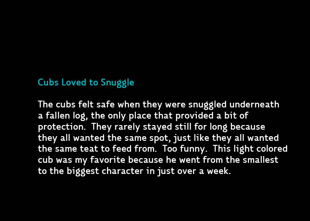 4-Snugglers