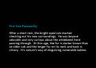 4Personality-Jun13-2014