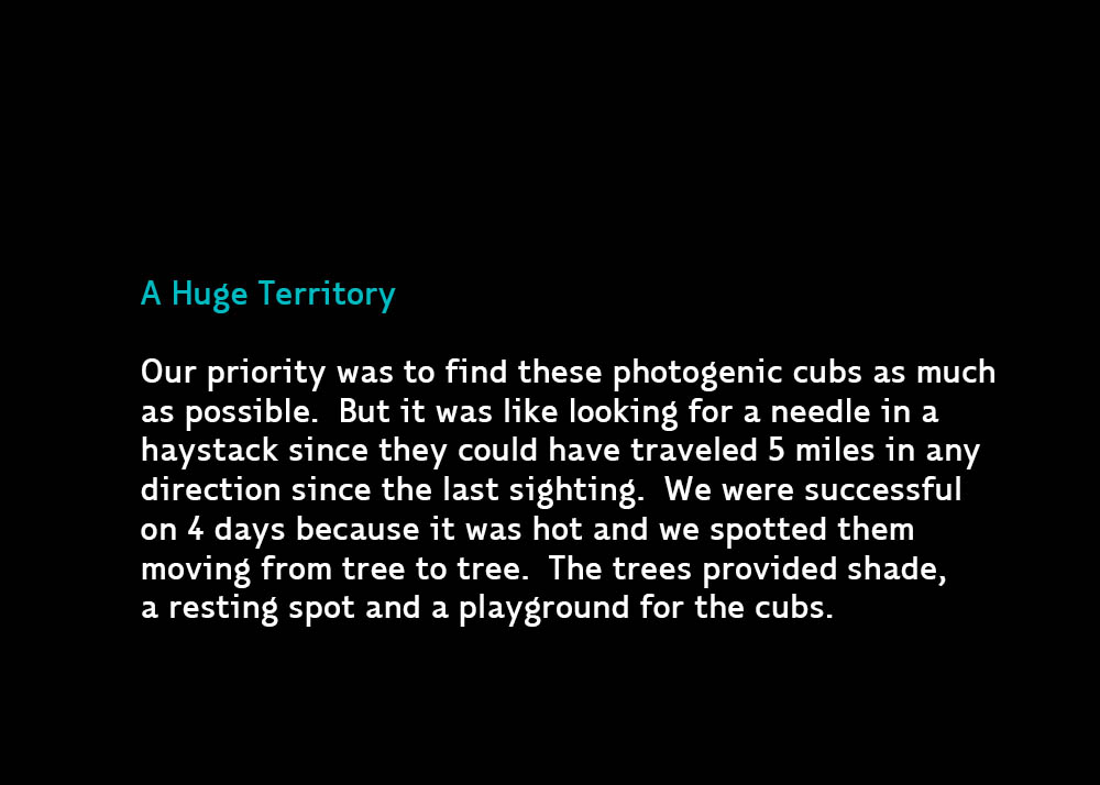 5-BigTerritory-Jul13-2015