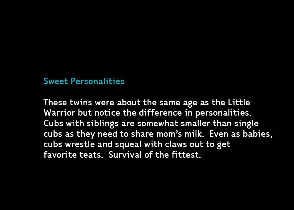 6b-TwinsTSweet
