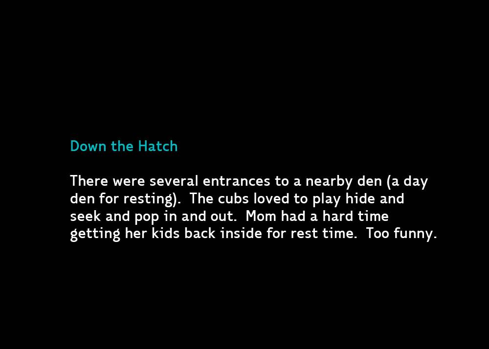 9-DownHatch