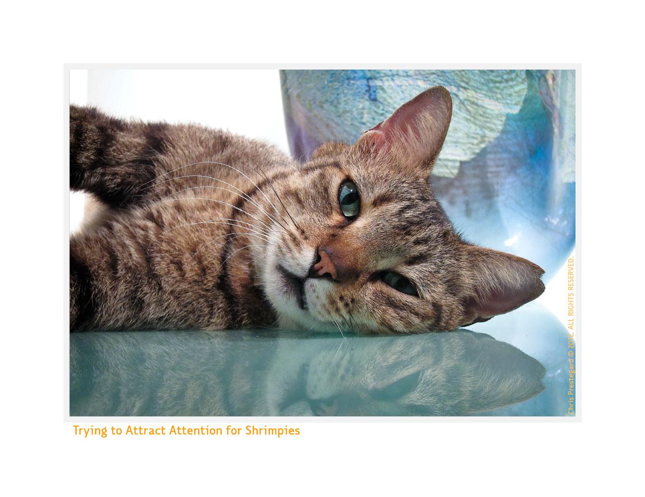 Baxter93b_Mar14-2012