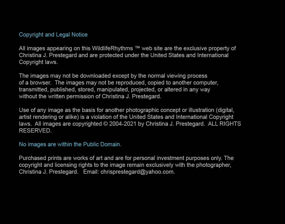 CJ-Copyright-Notice-2021-Dec31-2020
