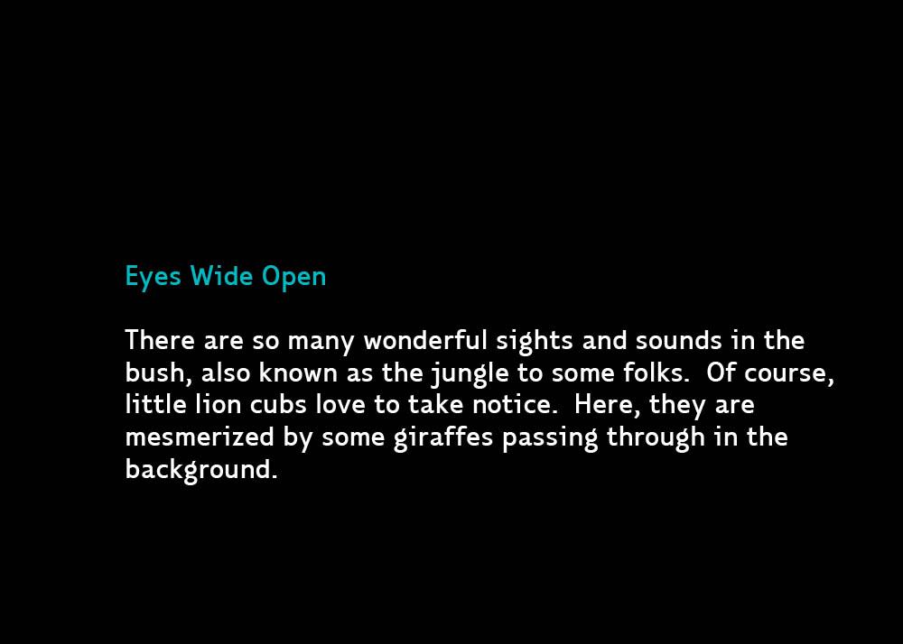 Cub-EyesWide