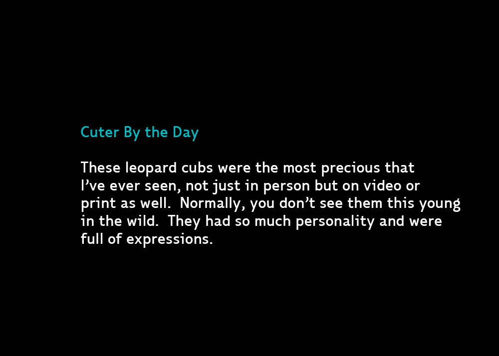 Cuter-Jul28-2012