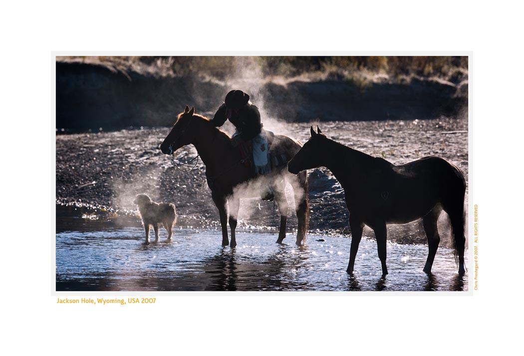 Horses6778_1-17-08