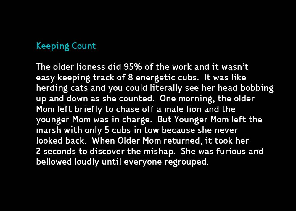 KeepingCount-jan27-2020